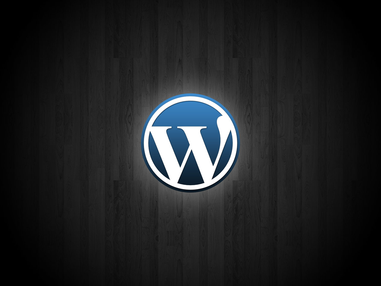 Adding custom script files to a WordPress theme